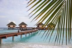 maldives (3)