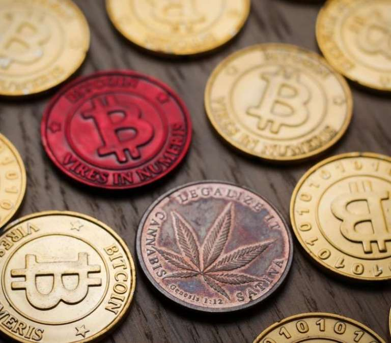 """""""Ribiška"""" smola nekdanjega čebelarja, ki je z marihuano prišel do bogastva v bitcoinih"""