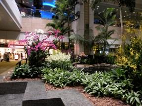 Singapore airport. Photo: ©SLOWAHOLIC
