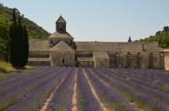 Abbaye de Senanque. Foto: ©Slowaholic