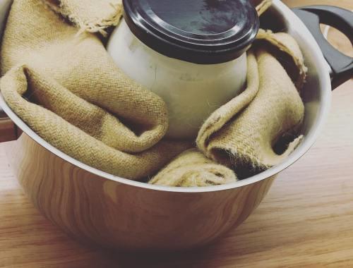 cómo hacer un yogur casero