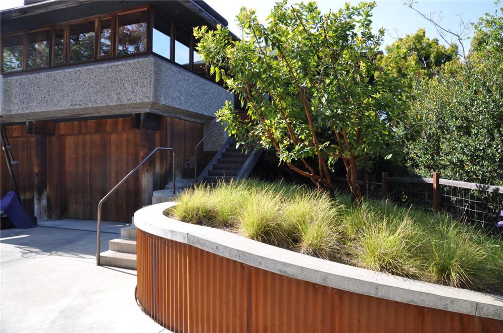 Ornamental Plants Grow Water