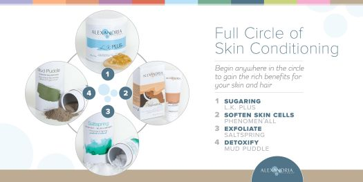 The Alexandria Professional Full Circle of Skin Conditioning Skin Treatment Program diagram, displaying the four components that make up the Full Circle.