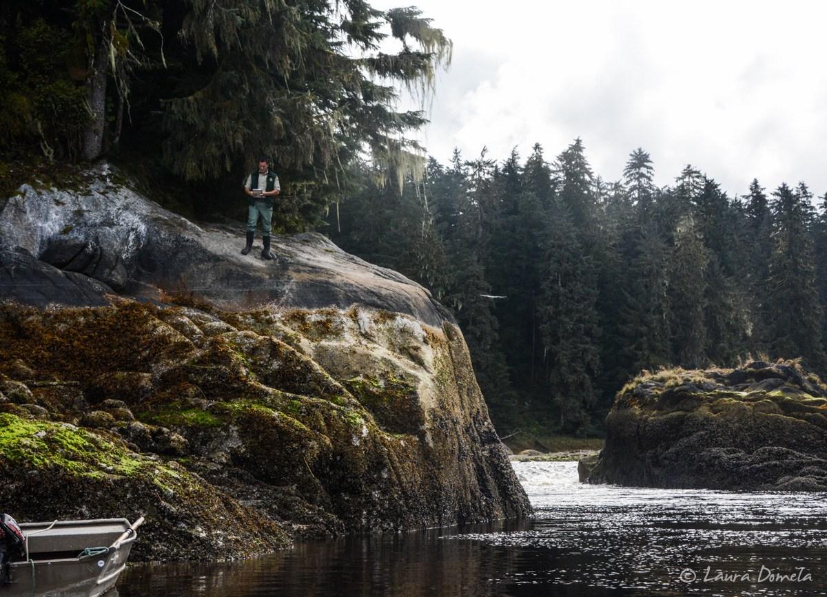 Ranger - Anan Bear Wildlife Viewing Site