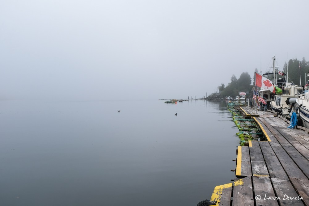 Foggy morning in Tahsis
