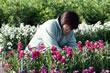 千倉でお花摘み