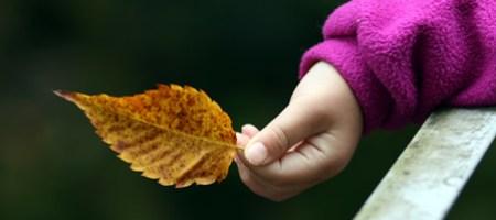 秋を感じて秋を感じて