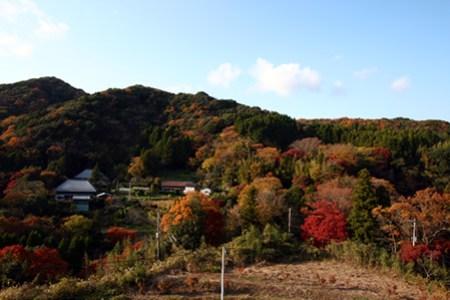 志駒渓谷 里の紅葉