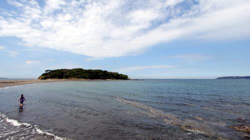 かなりきれいな海でした。