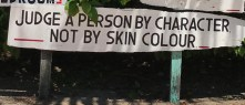 belize wisdom colour