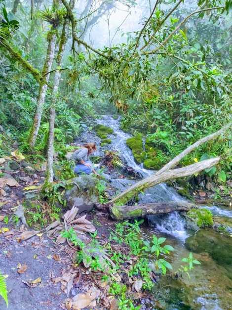 mountain spring or river geneva.JPG