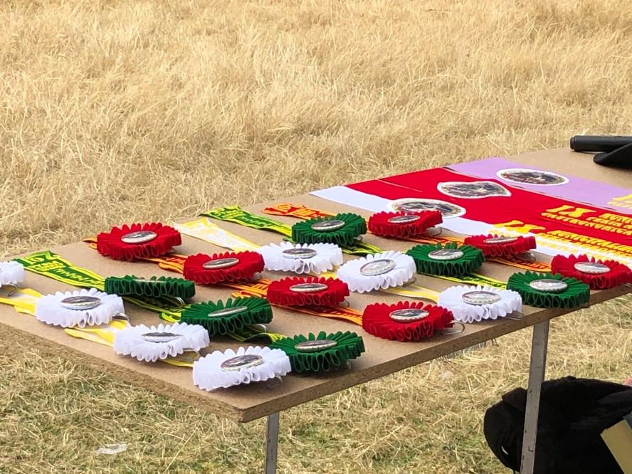 prize ribbons..JPG