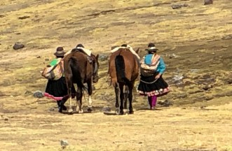 ascending local ladies with horses.JPG