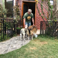 mike loving dogs