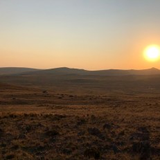 pampa sunset1