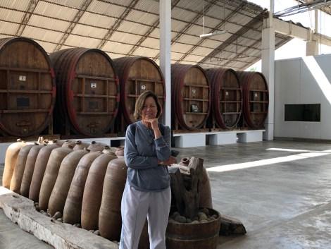 tacama vineyards1