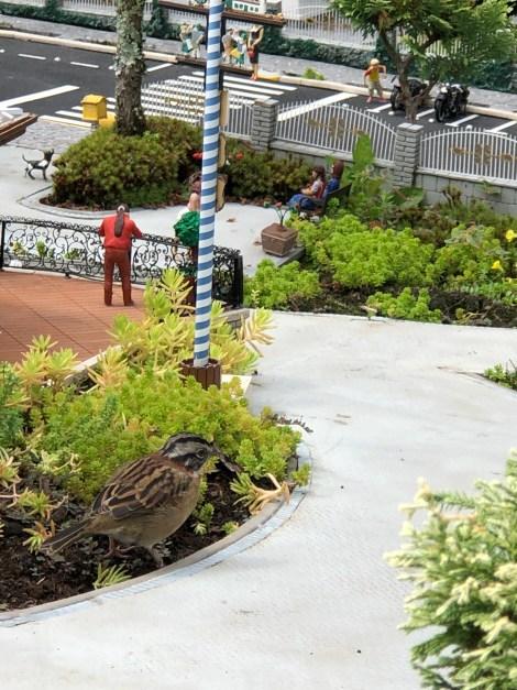 minimundobigbird