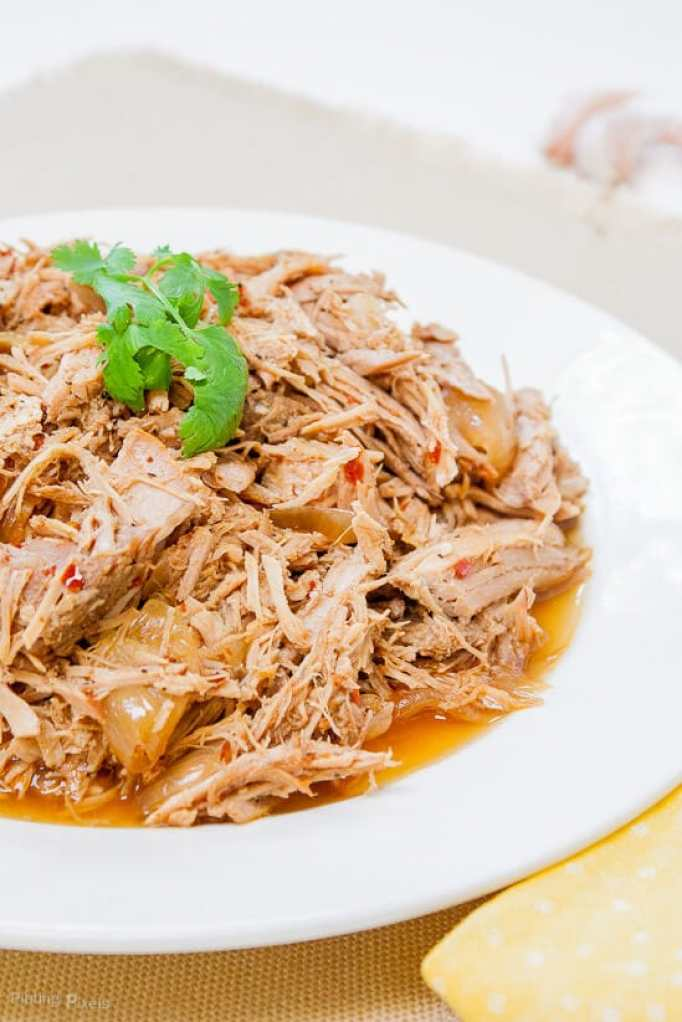15 Amazing Slow Cooker Pulled Pork Recipes - Slow Cooker ...