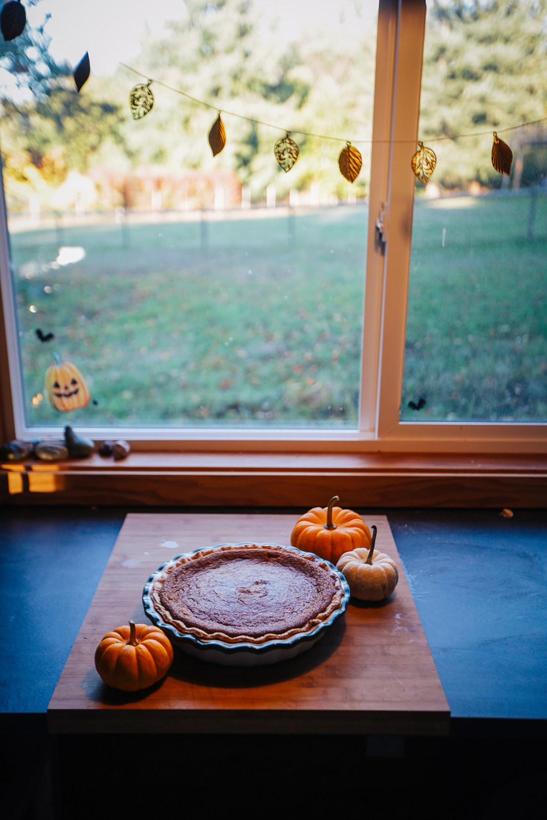Pumpkin pie on the counter