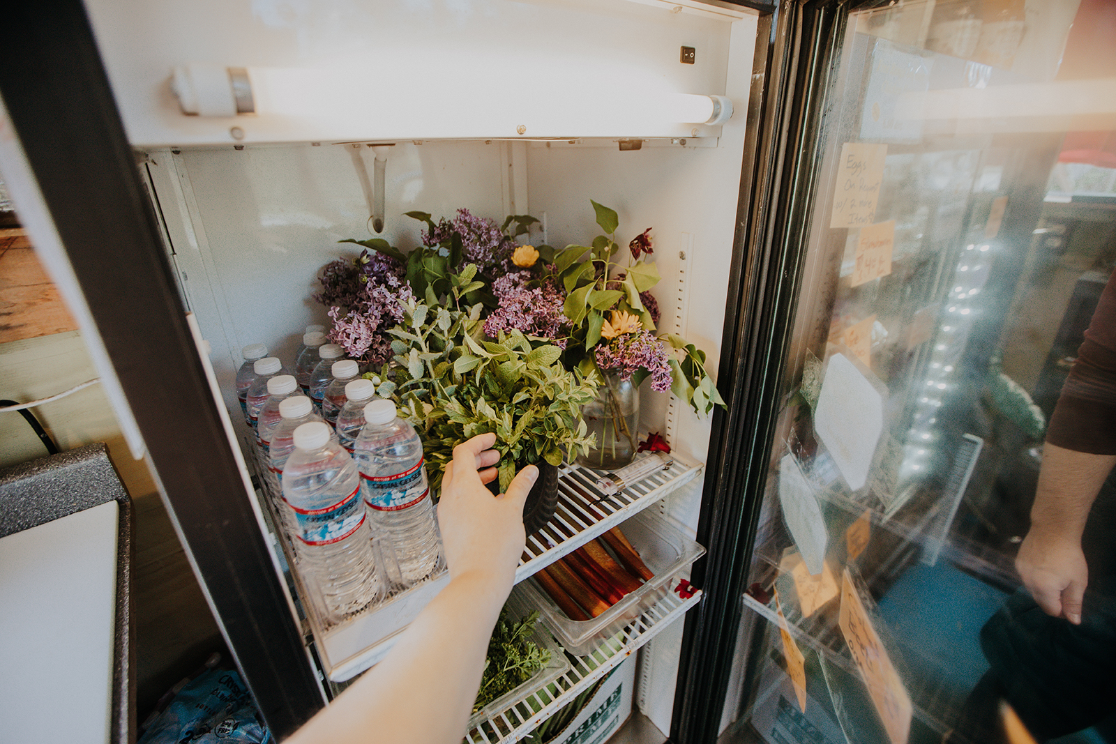 Elise reaches into a refrigerator to grab freshly cut flowers.