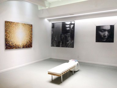 The painting Rajah by Randall Stoltzfus and artwork by Seung Mo PArk hang at Blank SPace Gallery in the summer of 2015