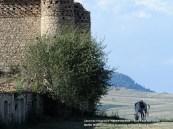 Località Montevaccaro - Lacedonia - Avellino