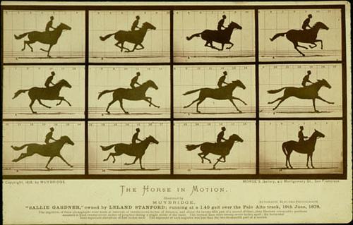 머이브리지, 말의 질주, 1878년.