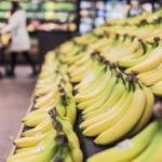바나나 스캔들: 농약투성이라 일본에선 안 먹는다 '카더라'의 진실