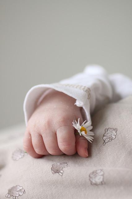 갓난아이 손 아이