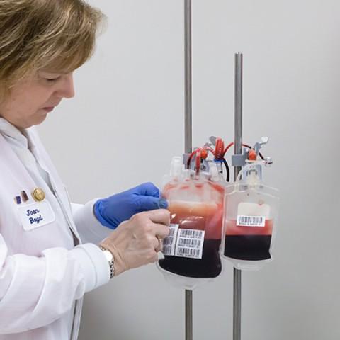 존스홉킨스대학 연구팀은 드론을 이용한 혈액 체제 운송이 품질에 미치는 영향을 분석했다. (사진 출처: 존스홉킨스메디슨)