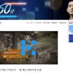 주간 뉴스 큐레이션: 국가가 만든 또 다른 위안부