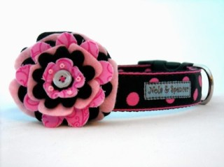 Balboa Posey Dog Collar in Pink