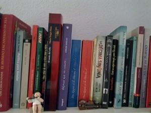 Estantería libros