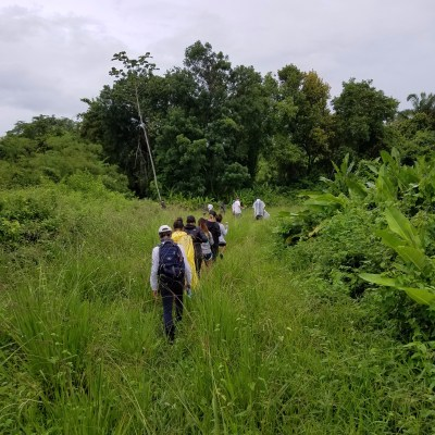 Hiking through the acres of wilderness at Monkey Bay