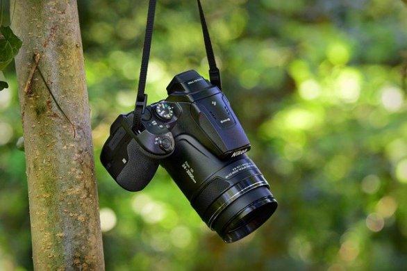 photography advice for novice and professionals alike 1 - Photography Advice For Novice And Professionals Alike