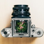 basic photography guide what you need to know - Basic Photography Guide: What You Need To Know