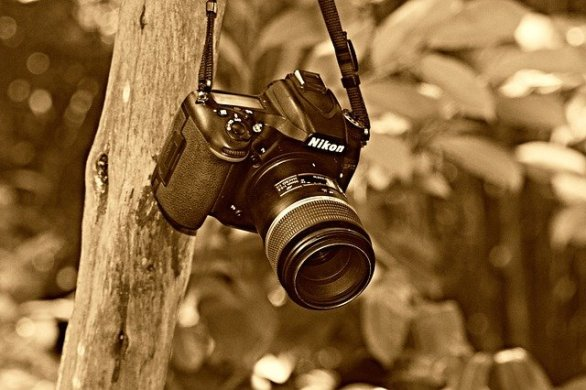 effective advice about the craft of taking photographs 1 - Effective Advice About The Craft Of Taking Photographs!