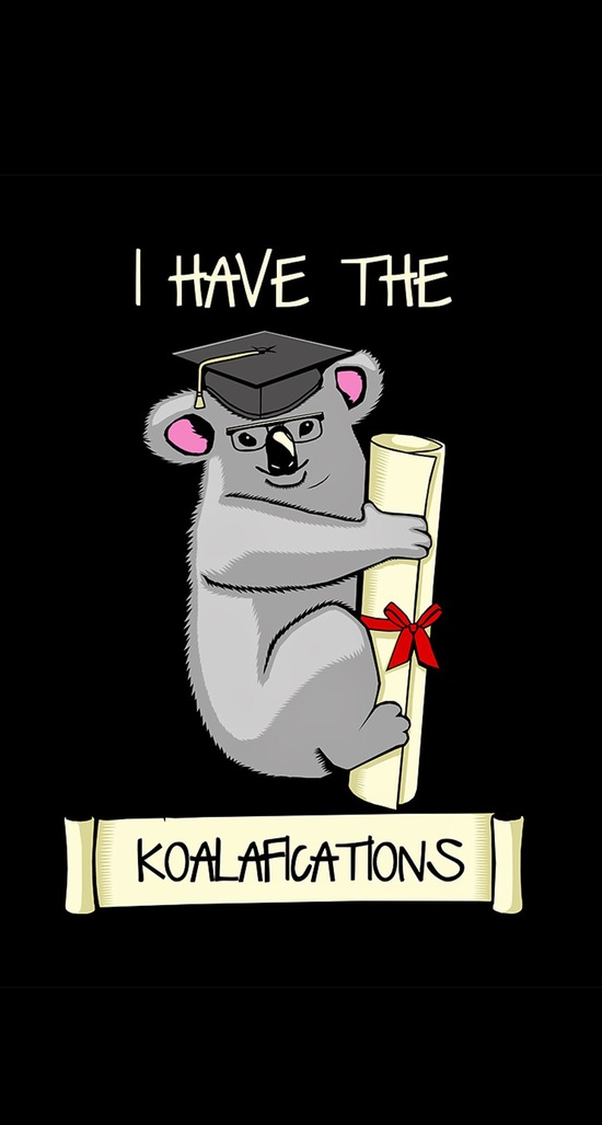 i have the koalafications iphone wallpaper