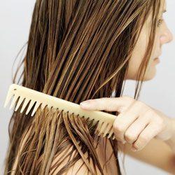 combing wet hair