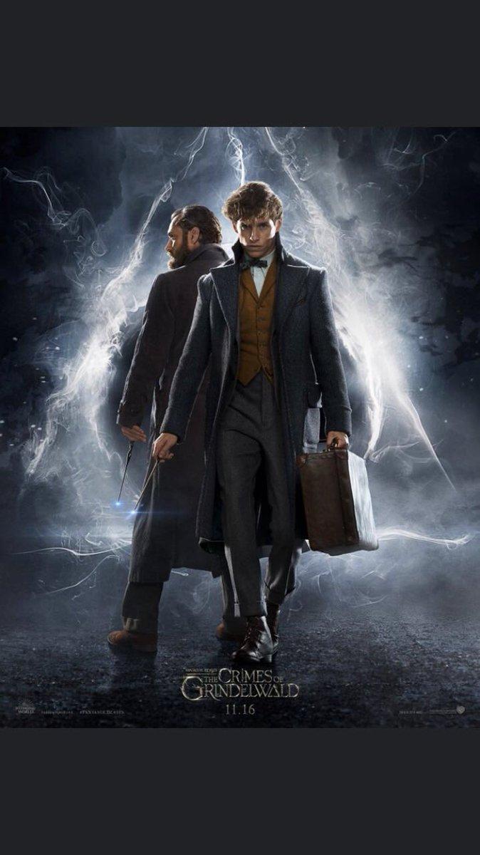 Animais Fantásticos: Os Crimes de Grindelwald | Confira Dumbledore, Hogwarts e muito mais no primeiro trailer do longa 17