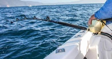 Tunfiskere søges…..