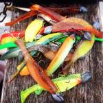 Softbaits Ad libitum – en guide til gummidyr