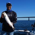 Jysk Småbådsfiskeklub afholder begynderkursus for nye trollingfiskere