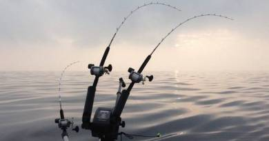 10 sikre råd til sejlads i tåge