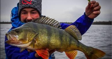 Godt nyt til Predator-fiskere – nyt spændende grej-samarbejde !