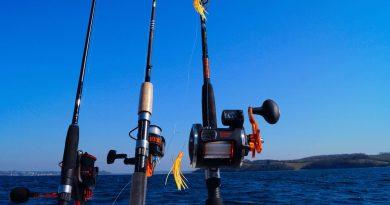 Mit første fiskegrej