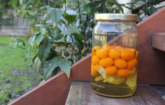Kumquat Elixir