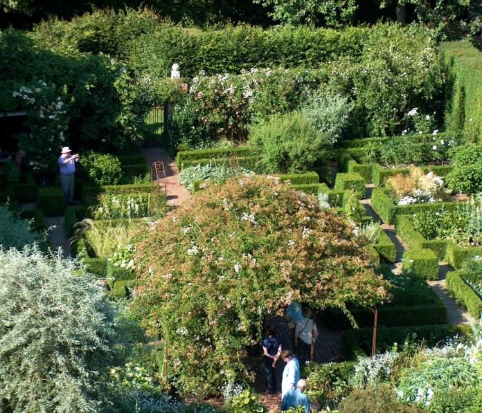white garden from above
