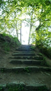 steps to Whitcliffe