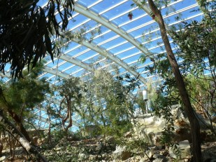 Roof of the Great Glasshouse